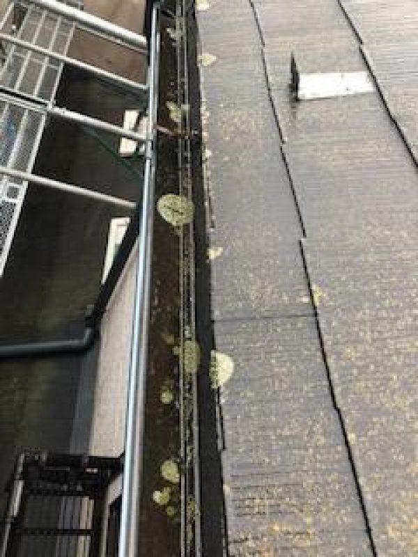 戸建て住宅 高圧洗浄工事サムネイル